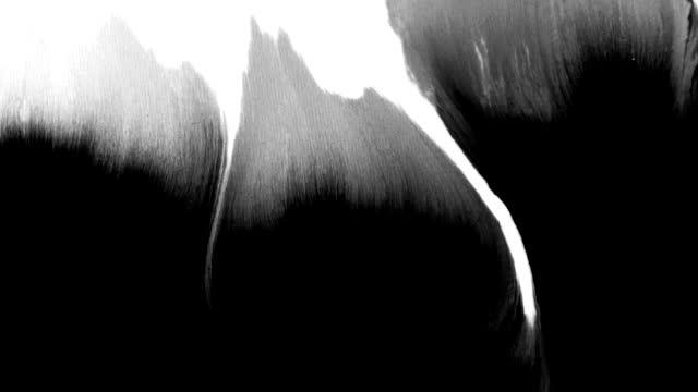 vidéos et rushes de l'abstrait d'éclaboussure d'encre couvre l'écran dans l'effet de rorschach de bandes noires de grain de grain grunge et de film - taché