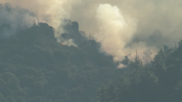 ktla inland empire ca us aerial view of smoke over burning forests in mountains on tuesday august 4 2020 coronavirus fears complicate apple fire... - burning stock-videos und b-roll-filmmaterial