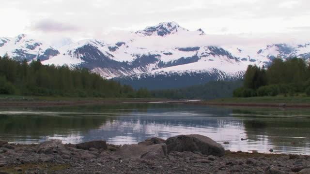 ws, inlet with forest and snow capped mountains in background, glacier bay national park and preserve, alaska, usa - inlet stock videos & royalty-free footage