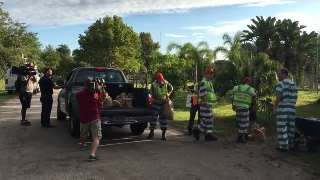 inmates at the brevard county sheriffs office inmate work farm give out sandbags to people in the community before hurricane matthew - prisoner stock videos & royalty-free footage