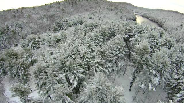 innisfree garden snow - hudson valley stock videos and b-roll footage