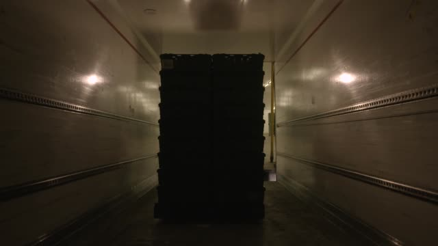 inside a lorry being loaded with freight - loading stock-videos und b-roll-filmmaterial