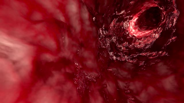 inside artery or intestine - globulo rosso video stock e b–roll