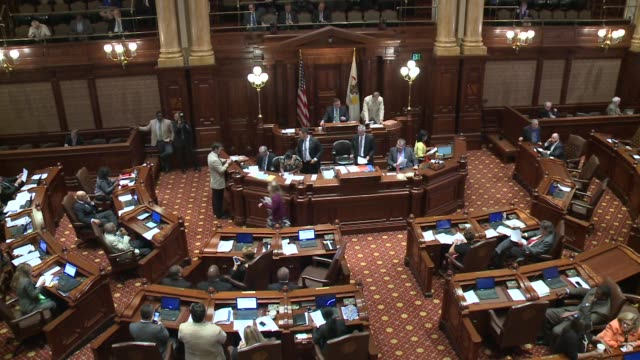WGN Inside Illinois Congressional Session At The State Capitol on August 11 2