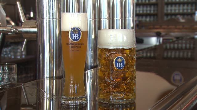 inside the hofbrauhaus brewery and restaurant beer stein and glass on table on october 02 2013 in rosemont illinois - beer stein stock videos and b-roll footage