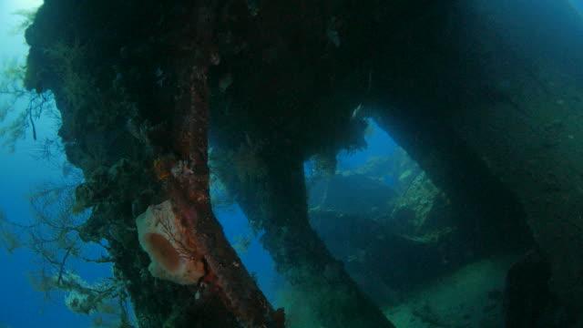 Liberty à l'intérieur de l'épave sous-marin (4K), Bali, Indonésie