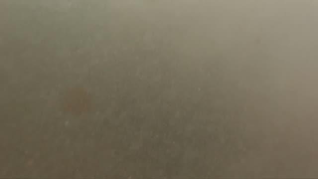 波の中 - カスカイス点の映像素材/bロール