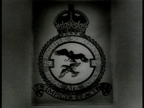 f insignia two eagles 'fighter squadron' ext men checking supermarine spitfire fighter planes on field cu air marshal sir hugh dowding writing on... - insignia stock videos and b-roll footage