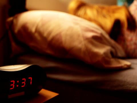 NTSC: Insomnia