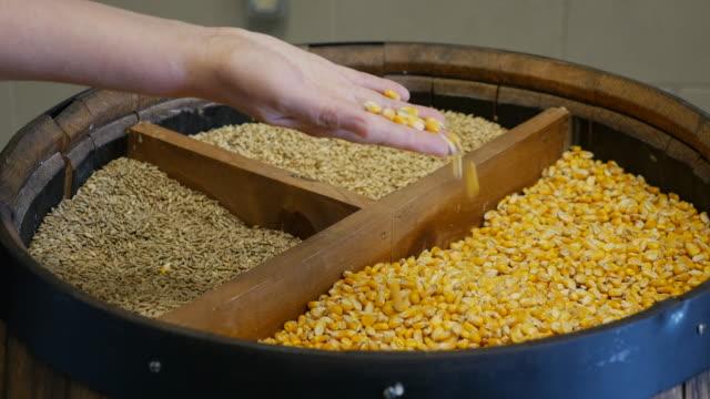vídeos y material grabado en eventos de stock de inspecting crop - manos ahuecadas