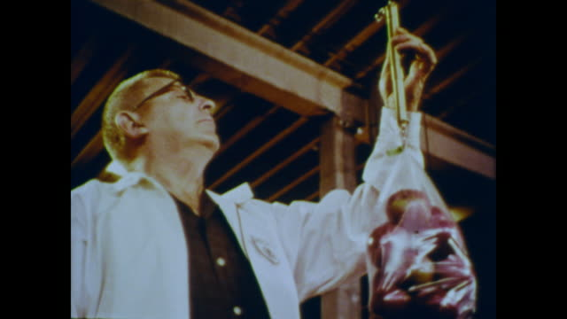 1966 usda inspector checks a bag of apples to ensure it is up to standards - inspector stock videos & royalty-free footage