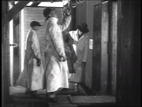 inspectors in abattoir inspecting sides of beef that are pushed in on hooks / camp sherman chillicothe ohio united states - chillicothe stock videos & royalty-free footage