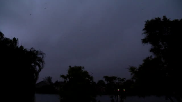 Intense and vivid lightning lights up the night sky in Pembroke Pines FL as a severe thunderstorm moves overhead