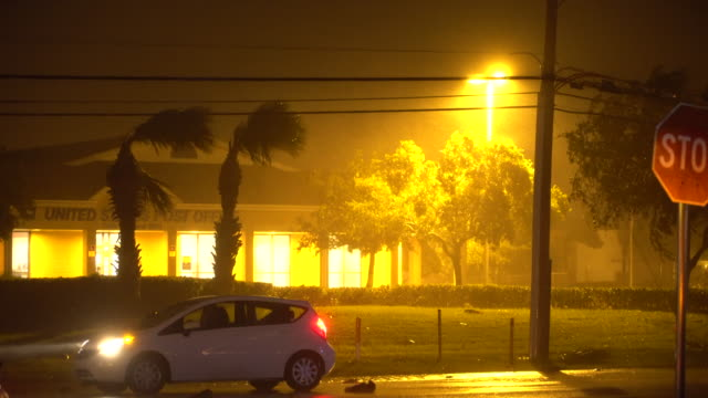 intense hurricane force winds roar through cape canaveral florida as hurricane matthew closes in on the coast palm trees sway and bend in the intense... - bending stock videos & royalty-free footage