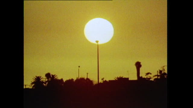 intense sunset over los angeles; 1972 - tree trunk stock videos & royalty-free footage
