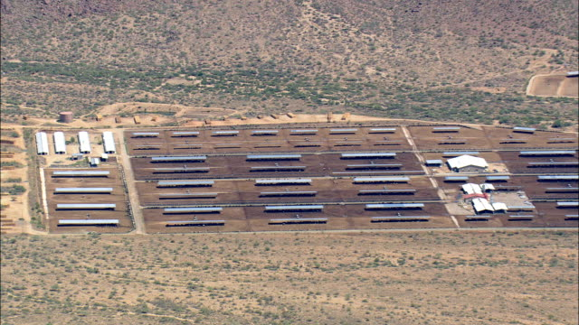 濃厚な牛ファーム-航空写真-アリゾナ、yavapai 郡、アメリカ合衆国 - 動物の色点の映像素材/bロール