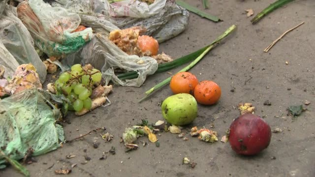 interior close ups of various food waste at a reuse and recycling centre on 13 may 2019 in london united kingdom - food stock videos & royalty-free footage