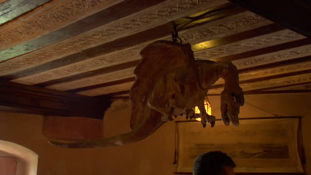 interior decor of a medieval castle banquet hall featuring a mounted legendary mythical flying winged dragon - banquet hall stock videos & royalty-free footage