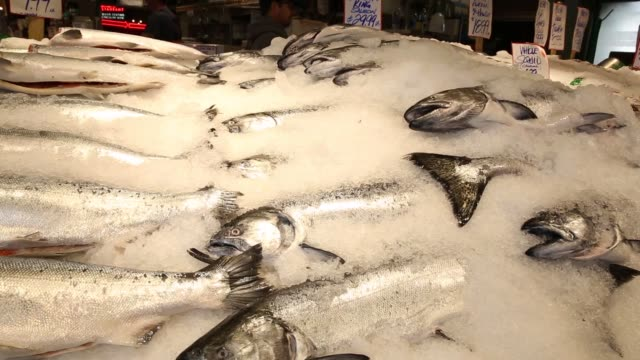 Interior footage of Pike Place Market as seafood is sold in Seattle WA on May 18 2017 Shots wide tilt up of employee throwing fish over pile of...