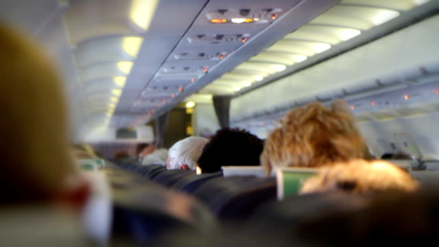 interior of a crowded aeroplane. hd - uncomfortable stock videos & royalty-free footage