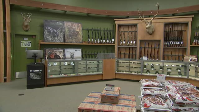 interior of empty gun shop including a counter with handguns on display rifles on the wall a mounted deer head on the wall and packages of ammunition... - gun shop stock videos & royalty-free footage