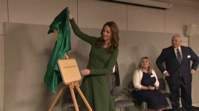 interior shot of catherine duchess of cambridge giving a short speech and unveiling a plaque to commemorate the official opening of the anna freud... - キャサリン妃点の映像素材/bロール