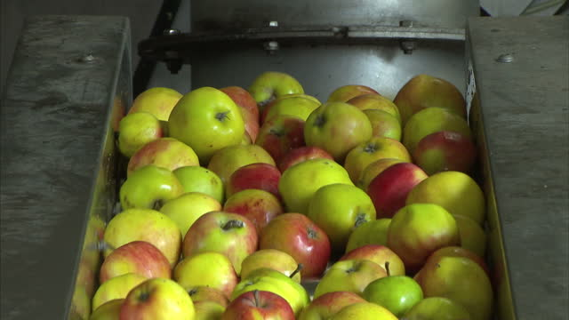 80 Top Apple Juice Video Clips & Footage - Getty Images