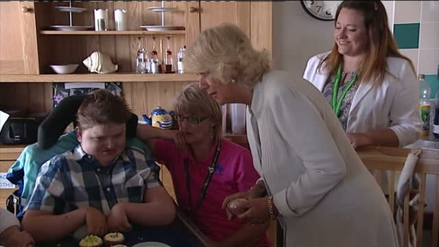interior shots camilla duchess of cornwall chatting to little boy at the little harbour children's hospital near st austell cornwall prince charles... - st austell stock videos & royalty-free footage