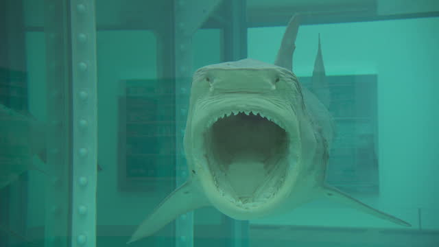 426 Damien Hirst Videos And Hd Footage Getty Images