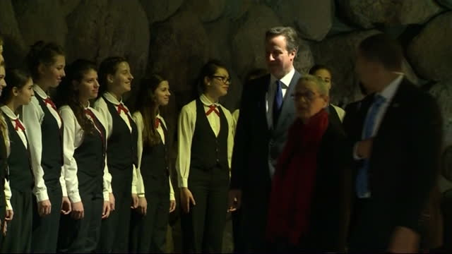 interior shots david cameron avner shalev standing in hall of remembrance walk away with wreath laying in front of eternal flame on march 12 2014 in... - 花輪を捧げる点の映像素材/bロール