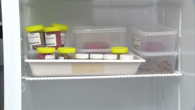 interior shots meat samples for testing in lab fridge anon scientist closing fridge door testing chart on door meat samples food control laboratory... - 馬肉点の映像素材/bロール