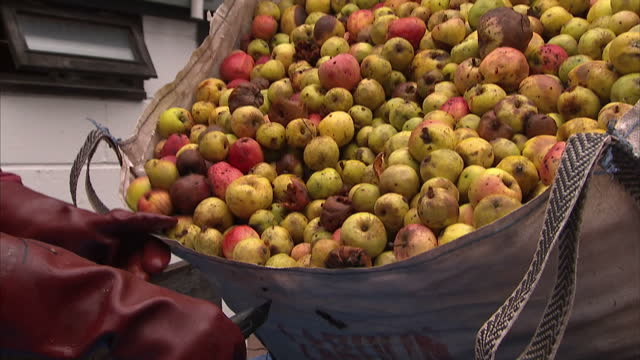 interior shots of apples being pressed for cider production at exmoor national park on january 07, 2017 in somerset, united kingdom. - exmoor national park stock videos & royalty-free footage