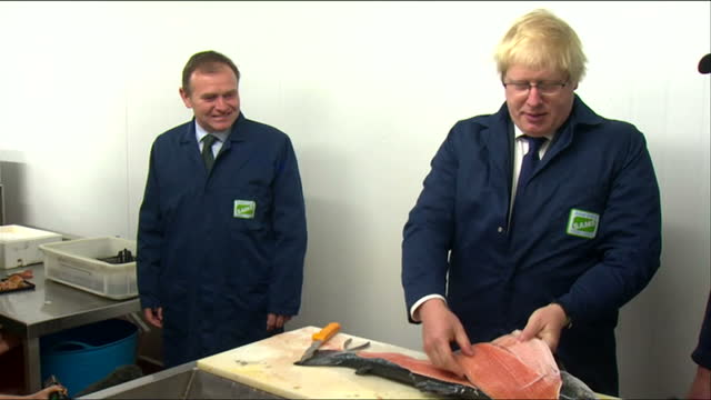 Interior shots of Boris Johnson Leave EU campaigner fillets a Norwegian salmon while on a visit to Lowestoft on June 16 2016 in Suffolk England