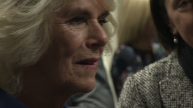interior shots of camilla duchess of cornwall meeting representative from the safelives domestic abuse support charity and hospital staff during a... - domestic staff stock videos and b-roll footage