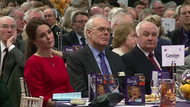 interior shots of catherine, duchess of cambridge sitting with graham butland and other officials during an event to launch the east anglia... - east anglia stock-videos und b-roll-filmmaterial