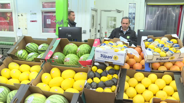 interior shots of crates of fruit on display including apples lemons melons tomatoes avacado peaches and plums on august 16 2016 in london england - pflaume stock-videos und b-roll-filmmaterial