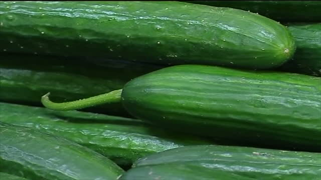 interior shots of fruit and vegetables in crates including close up of cucumbers in crates and fruit and vegetables for sale in russian market the eu... - cucumber stock videos and b-roll footage