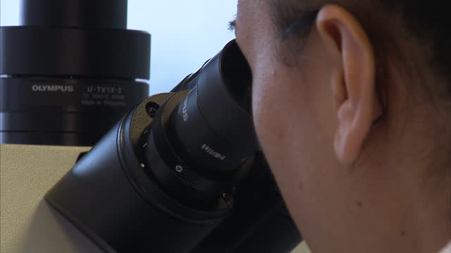 interior shots of lab technicians looking into microscope looking at digital mitochondria samples on computer monitors lab technicians take samples... - mitochondrion stock videos & royalty-free footage