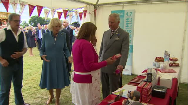 interior shots of prince charles and camilla, duchess of cornwall visiting the east anglia air ambulance stand at sandringham flower show.>> on july... - east anglia stock-videos und b-roll-filmmaterial