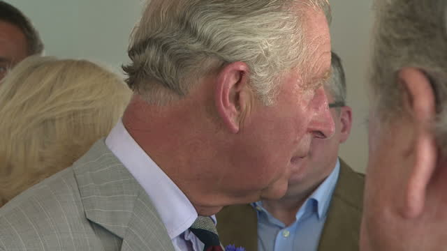 interior shots of prince charles and camilla duchess of cornwall meeting the actor martin clunes and others from the cast of doc martin on july 19,... - マーティン クランズ点の映像素材/bロール