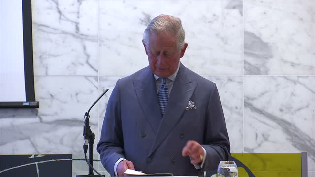 vídeos y material grabado en eventos de stock de interior shots of prince charles giving a speech to the global leaders conference on health and antimicrobial resistance at the royal society on may... - antibiotic resistant