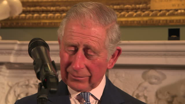interior shots of prince charles prince of wales giving speech at the 'style for soldiers' christmas reunion party at st james's palace on december... - principe carlo principe del galles video stock e b–roll