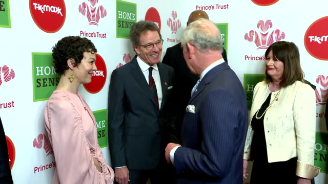 interior shots of prince charles speaking to celebrity ambassadors including bryan cranston, helen mccrory, tom hardy and olivia colman before the... - ヘレン マックローリー点の映像素材/bロール