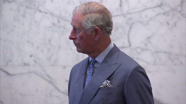 vídeos y material grabado en eventos de stock de interior shots of prince charles walking to a podium to make a speech at the global leaders conference on health and antimicrobial resistance at the... - antibiotic resistant