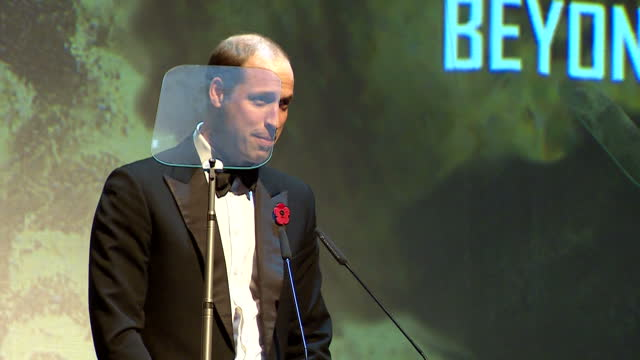 interior shots of prince william on stage making speech, introducing the beyond theatre award on november 13, 2016 in london, england. - レイフ・ファインズ点の映像素材/bロール