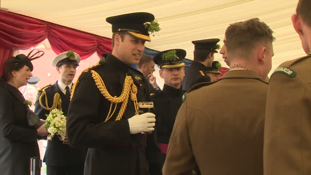 vidéos et rushes de interior shots of prince william speaking to soldiers of the 1st battalion irish guards with a pint of guinness in his hand during st patrick's day... - mons barracks