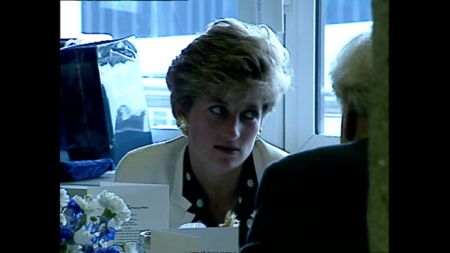 interior shots of princess diana, princess of wales, sitting at table int he qeii building and chatting to guests. on 23 june 1992 london, england, - relationsproblem bildbanksvideor och videomaterial från bakom kulisserna