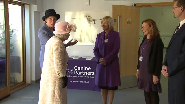 vídeos de stock, filmes e b-roll de interior shots of queen elizabeth ii at the headquarters of the charity canine partners on 30 november 2017 in midhurst united kingdom - 2017