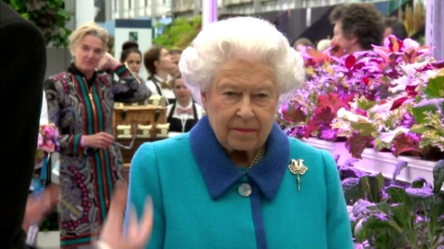 interior shots of queen elizabeth ii walking around a greenhouse at the chelsea flower show at the royal hospital chelsea on may 18, 2015 in london,... - formal garden video stock e b–roll
