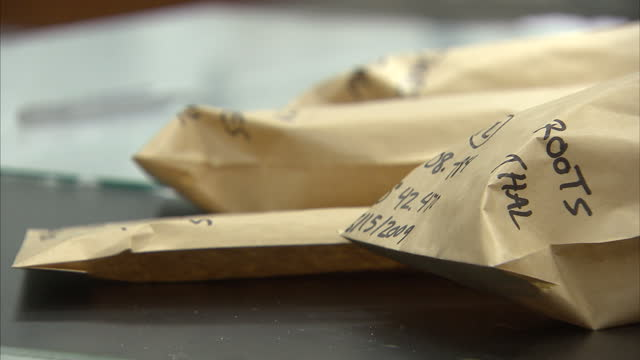 interior shots of researchers packing envelopes with samples at the dauphin island sea lab on august 1 2010 in alabama united states - 2010 stock videos & royalty-free footage